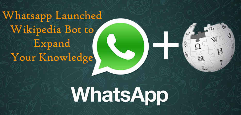 Photo of How To Use WhatsApp Bot As A Search Engine And Wikipedia: Must Try
